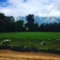 Photo taken at Thelema Wine Farm by Ana Beatriz on 11/2/2016