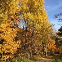Photo taken at Keskuspuisto by Ville P. on 10/12/2013