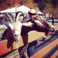 Photo taken at Lehigh Valley Zoo by Discover Lehigh Valley on 10/20/2012