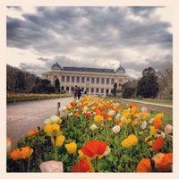 Photo taken at Botanical Garden of Paris by Pauline B. on 4/15/2012
