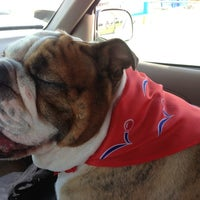 Photo taken at PetSmart by REALTOR® Jennifer P. on 3/6/2013