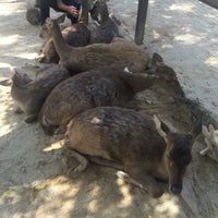 Photo taken at Rabbit Park by Iskhandar S. on 7/9/2016