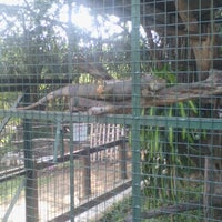 Photo taken at Mini Zoo Taman Teruntum by SN N. on 6/28/2015