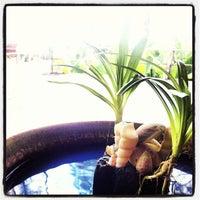 Photo taken at Haadson Resort Phang Nga by Apiwat B. on 5/16/2013