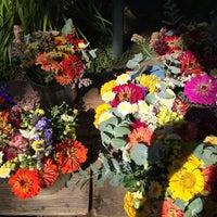 Photo taken at Healdsburg Farmers' Market by Marie on 7/5/2014