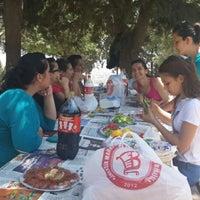 Photo taken at Taşkent Piknik Alanı by Zehra V. on 5/15/2014