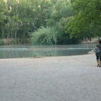 Photo taken at Balsa de Ves by Sisco P. on 7/17/2014