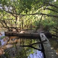 Photo taken at Parc Ornitologique du Teich by Rita A. on 8/24/2015