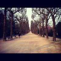 Photo taken at Botanical Garden of Paris by Marcelo P. on 4/8/2012