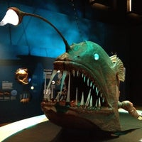 Photo taken at Australian Museum by Chris E. on 8/7/2012