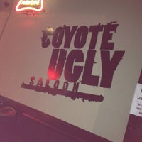 Photo taken at Coyote Ugly Saloon by Mandy M. on 2/13/2012