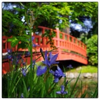 Photo taken at Jardins Albert Kahn by Didier L. on 5/4/2013