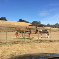 Photo taken at Pagemill Pastures by Winnie C. on 7/13/2015