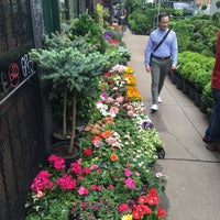Photo taken at Flower District by O K. on 4/23/2016