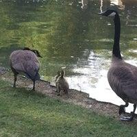 Photo taken at Memphis Botanic Garden by Kristen M. on 4/26/2012