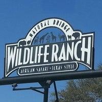Photo taken at Natural Bridge Wildlife Ranch by Cheri G. on 3/24/2013