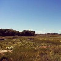 Photo taken at Belle Isle Marsh by Jason A. on 9/7/2014