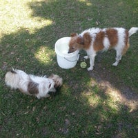 Photo taken at West Dog Park by Eric H. on 5/9/2013