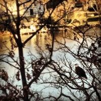 Photo taken at Lake Loch Lomond by Byron B. on 11/25/2012
