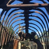 Photo taken at The Boneyard by Cynthia S. on 9/10/2016