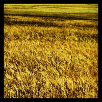 Photo taken at Balsa de Ves by Jose Antonio B. on 5/27/2012