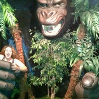 Photo taken at Museum Of The Weird by Katie P. on 6/24/2012