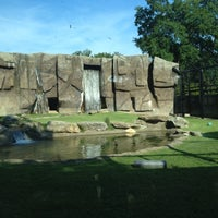 Photo taken at George H. Carroll Lion Habitat by Coach Bobby C. on 8/12/2012
