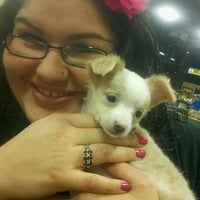 Photo taken at Petland by Melissa M. on 11/13/2011