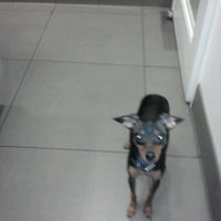 Photo taken at West Chelsea Veterinary by heather p. on 2/25/2012