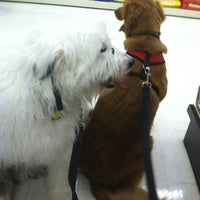 Photo taken at Pet Supplies Plus by Jennnnay Z. on 6/2/2012