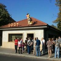 Photo taken at Lodziarnia Kostusiak by Mikolaj I. on 10/2/2011