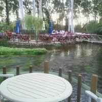 Photo taken at Olive Farm by Berna Tugce C. on 6/9/2012