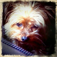 Photo taken at Bark 'N Bake by Ashley C. on 12/7/2011