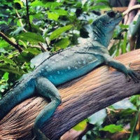 Photo taken at Reptile House by Lucas M. on 7/24/2012