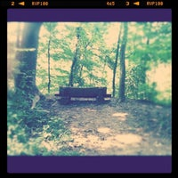 Photo taken at Alapocas Woods Park (Hiking Area) by Becky B. on 9/23/2011