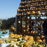 Photo taken at County Line Orchard by Ducky on 10/15/2011