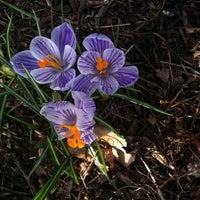 Photo taken at Wegerzyn Gardens MetroPark by James W. L. on 3/11/2012