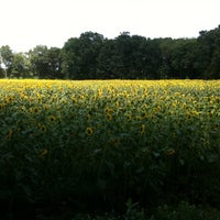 Photo taken at Buttonwood Farm by Peter B. on 7/31/2011
