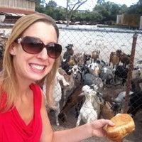 Photo taken at CJ Goat Farm by Lauren C. on 8/24/2012