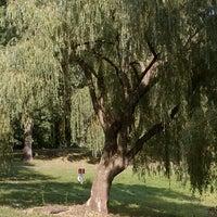 Photo taken at Otsiningo Park by Andrea P. on 7/12/2012