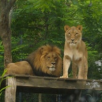 Photo taken at Akron Zoo by Vanessa M. on 7/28/2012
