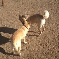 Photo taken at David Lorenz Dog Park by Jennifer on 9/3/2012