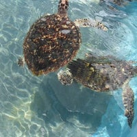 Photo taken at Isla Mujeres by motalicious on 9/9/2012