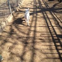 Photo taken at Veterans Grove Dog Run by Mariana B. on 2/27/2012