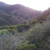 Photo taken at San Pedro Valley County Park by Carol H. on 3/13/2012