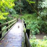 Photo taken at Tryon Creek State Park by Jonny W. on 10/8/2011