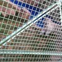Photo taken at Doha Zoo by Abdelaziz A. on 2/18/2012