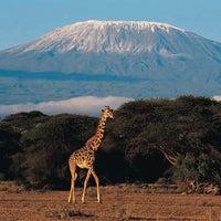 Photo taken at Mount Kilimanjaro by Giacomo M. on 8/24/2012