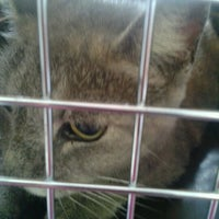 Photo taken at Humane Society of Greater Miami South by Jessica W. on 6/26/2012