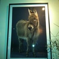 Photo taken at Bar Bambino by Jenn L. on 6/3/2012